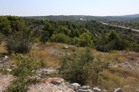 Land with panoramic view